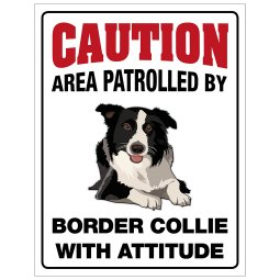 P1368417 border collie bordercollie skylt här vaktar jag caution varning