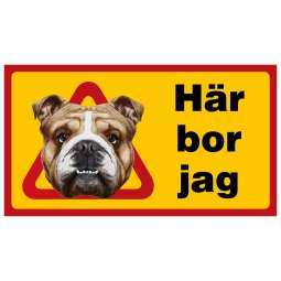 här bor jag olde english bulldog old bulldogg engelsk