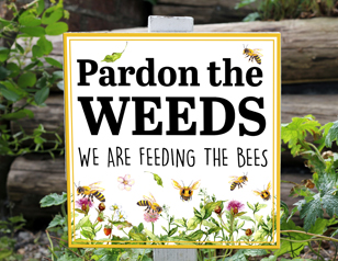 Pardon the weeds, we are feeding the bees